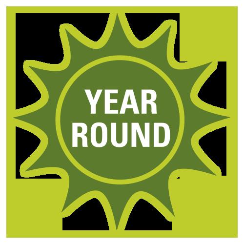 year-round